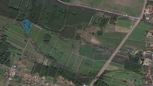Do sprzedania widokowa działka 5100 m2 w Kuźniczysku powiat Trzebnicki